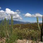 Oaxaca Spiritual journey