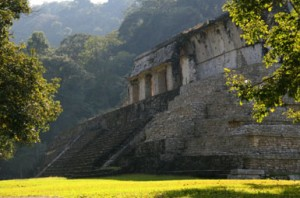 palenque6