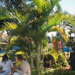 Casa Gardens
