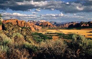 Zion National Park Art& Spirit