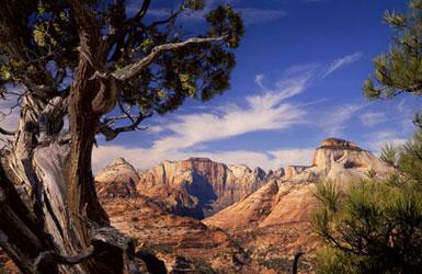 Zion National Park Artist Retreat