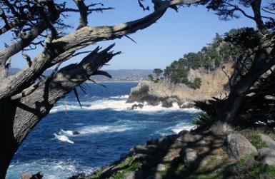 Big Sur California Painting Retreat