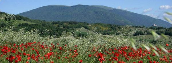Spiritual Retreat Italy