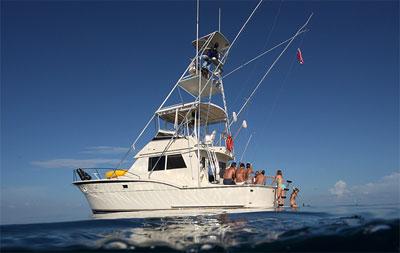 Bimini boat